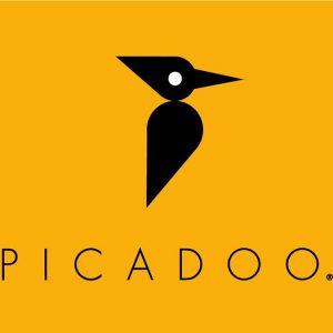 Orango_Portfolio_Picadoo