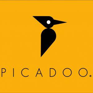 picadoo header orango-01